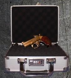 aluminum_gun_case2